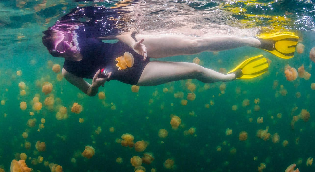 palau jellyfish lake rock islands woman snorkeling