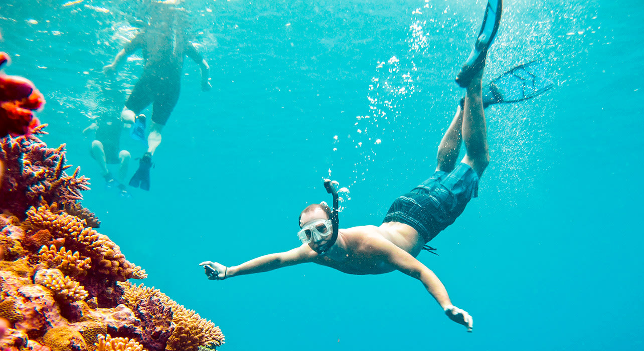 melanesia solomon islands papuang vanuatu snorkeler