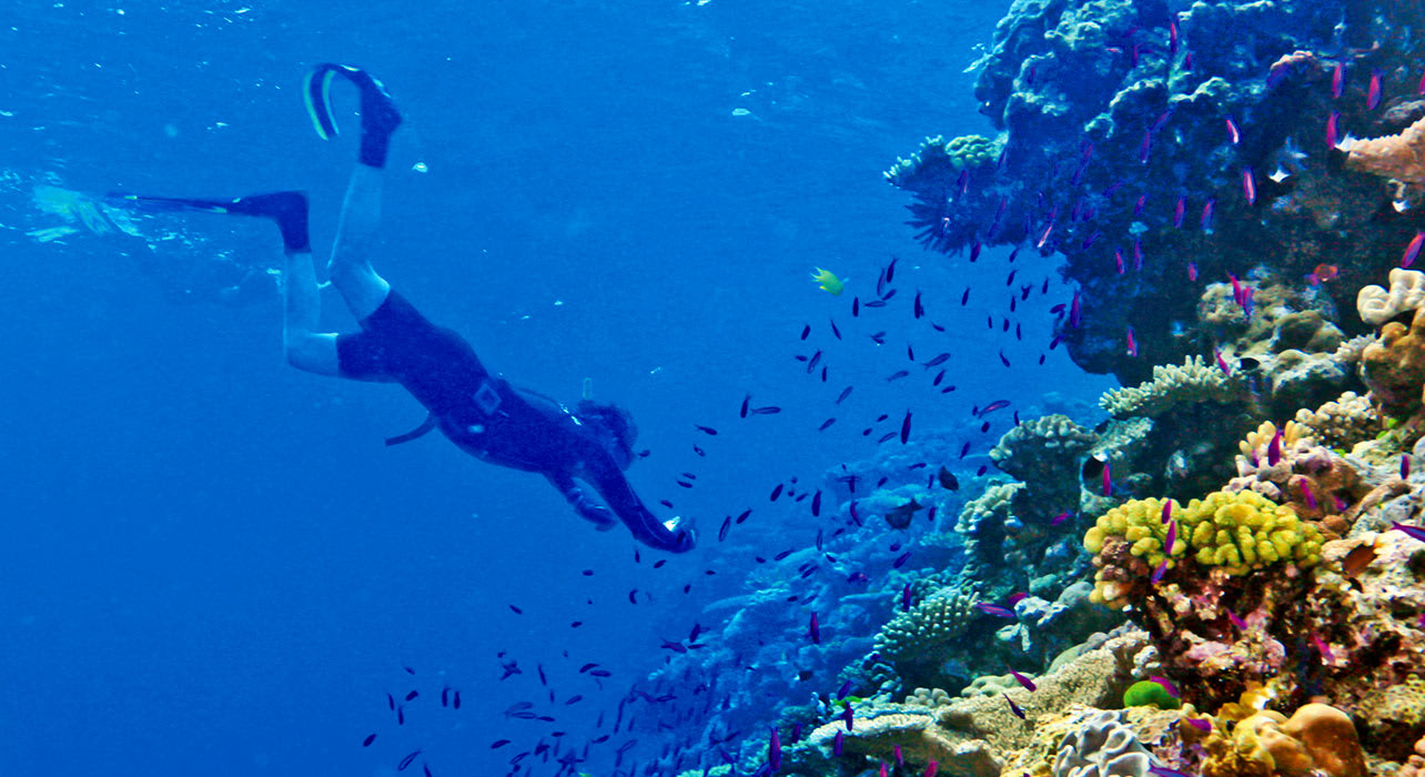 cruise snorkeling trobriands tufi madang cruise zegrahm ashmore reef