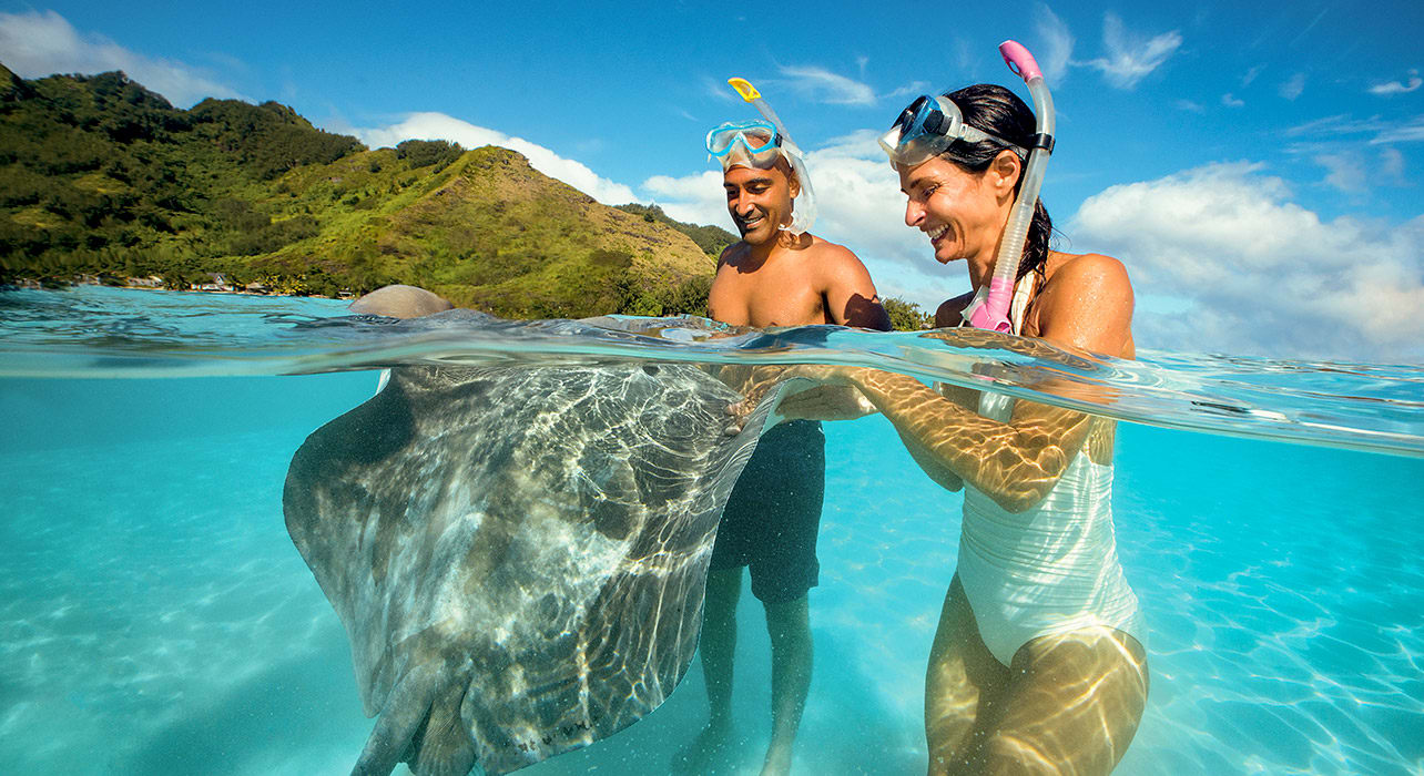 society islands moorea stingray excursion snorkeling