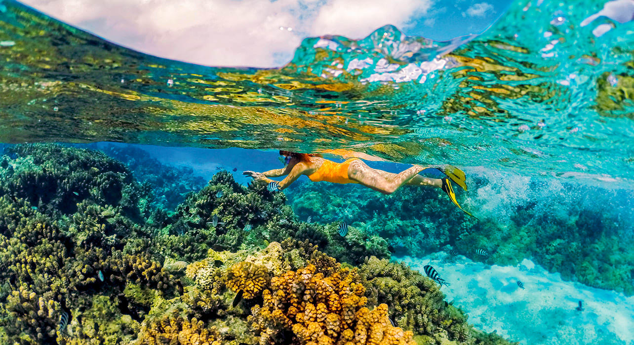cook society islands bora bora_snorkeling