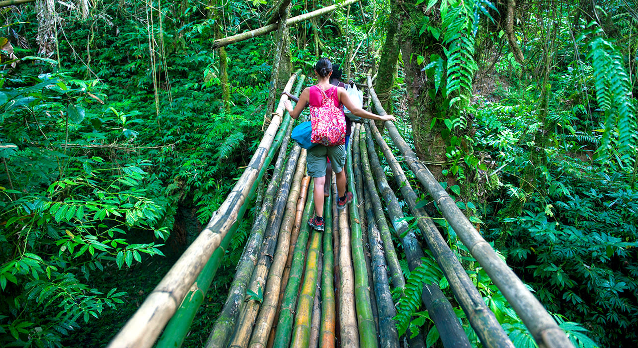 bamboo bridge vanuatu