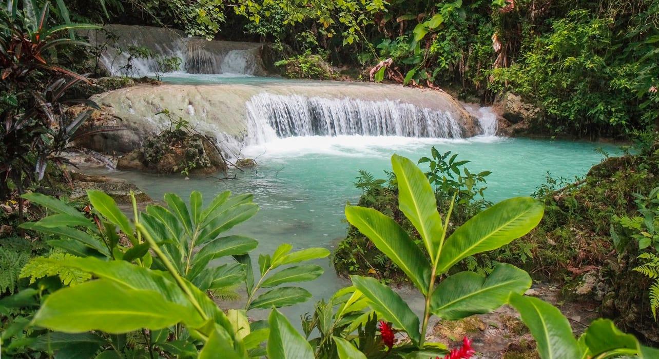 vanuatu waterfall rainforest