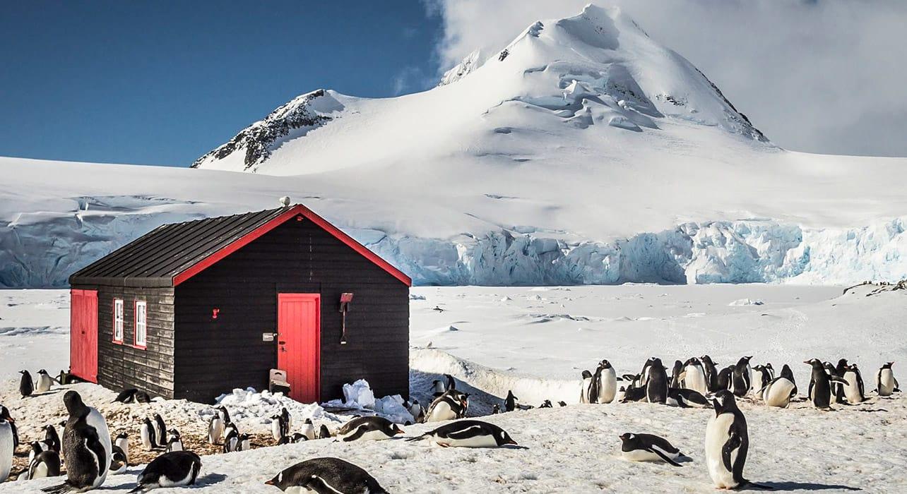 anjtarctica penguins station mountain snow glacier