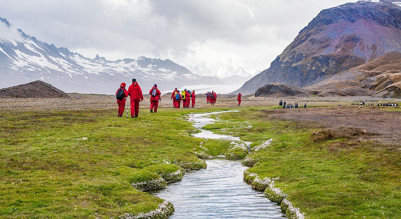 antarctica south georgia fortuna bay people walking