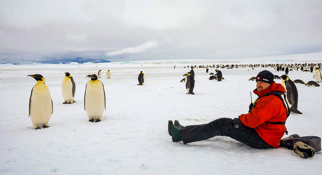 weddell sea antarctica man sitting with emperor penguins