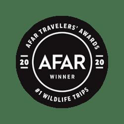 AFAR 2019 Award