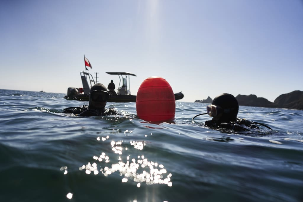 Scuba divers resting near a buoy before starting an urchin and kelp survey dive