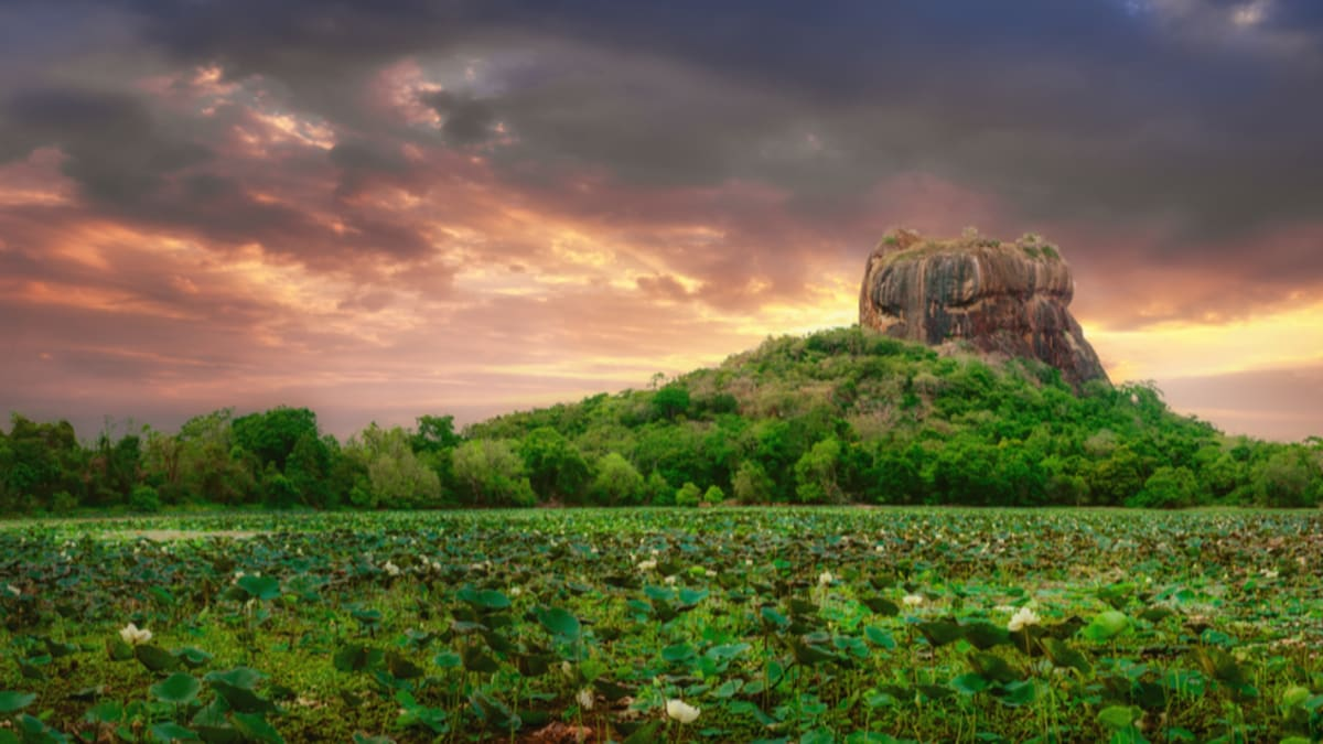 Sigiriya Tour Packages & Holidays With Tripfez