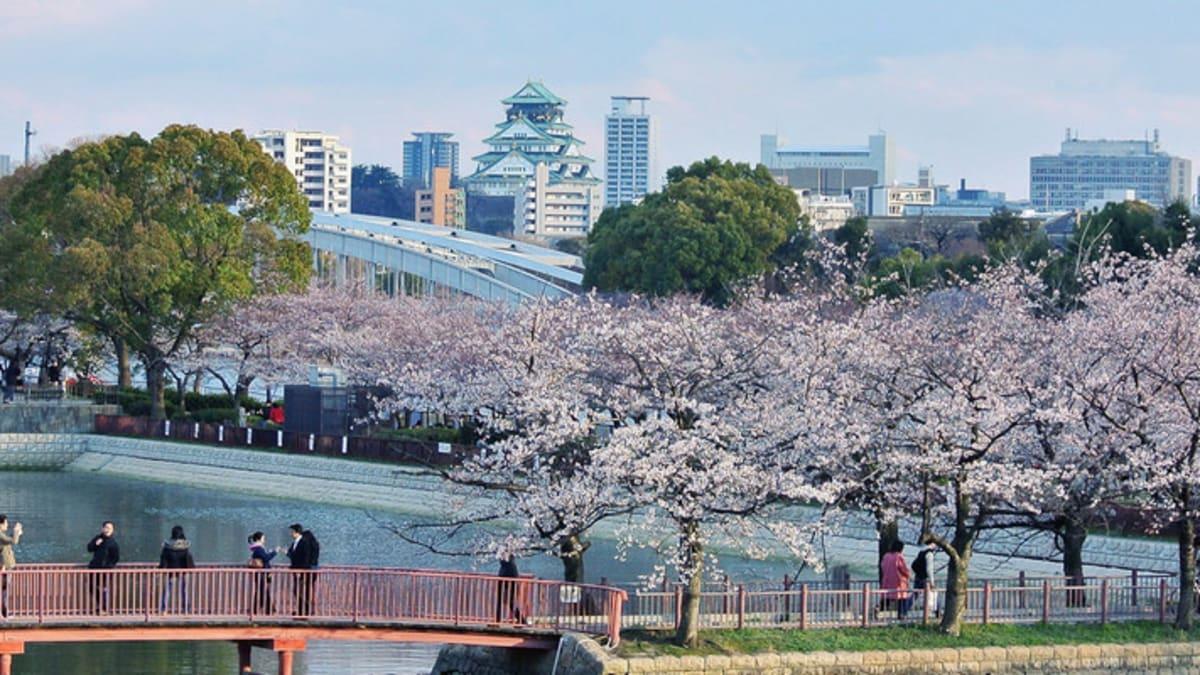 Pakej Percutian ke Osaka Bersama Tripfez