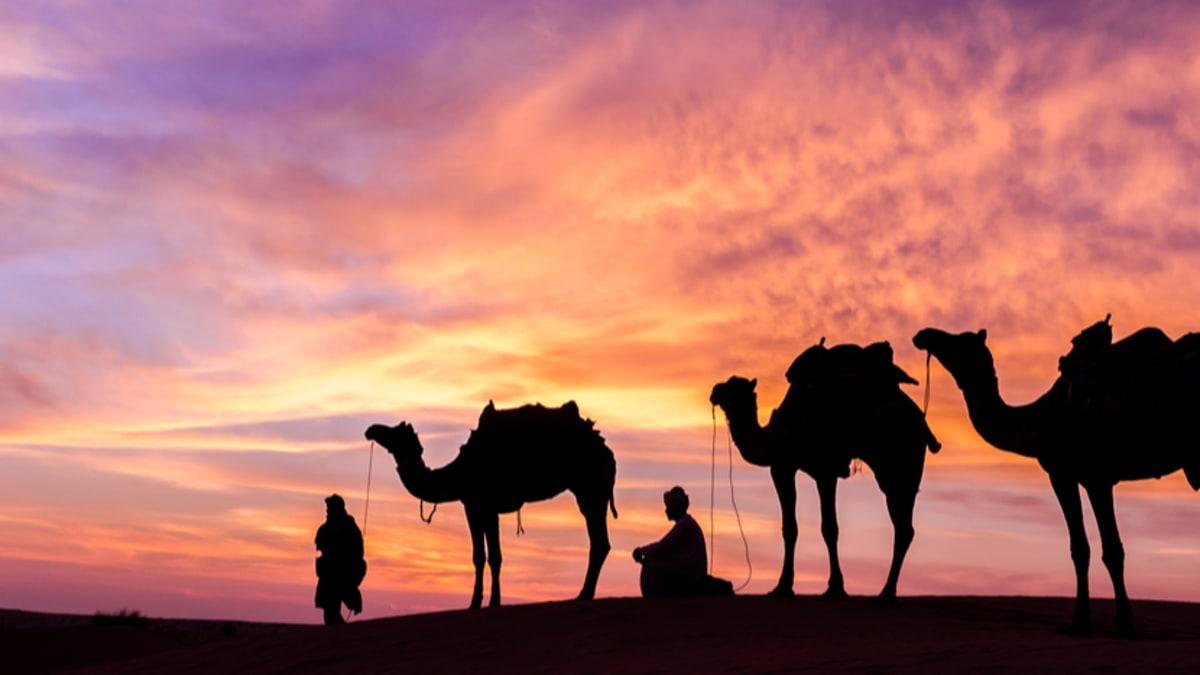 Pakej Percutian ke Arab Saudi Bersama Tripfez