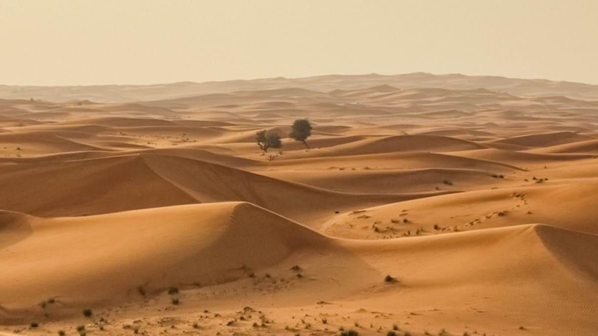 Pakej Percutian ke Emiriah Arab Bersatu Bersama Tripfez