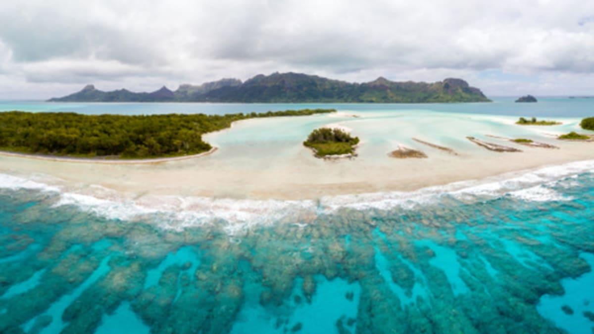 Pakej Percutian ke Oceania Bersama Tripfez