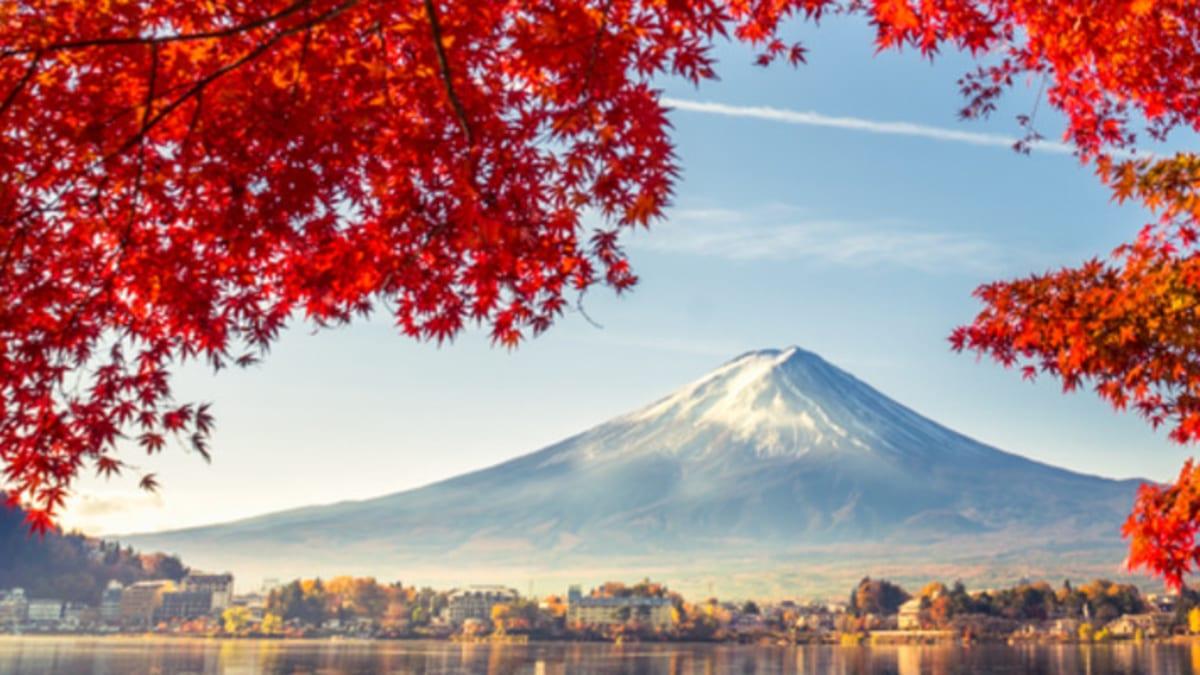 Pakej Percutian ke Asia Bersama Tripfez