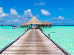Tripfez Travel Discover Maldives (Premium)  package