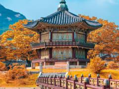 Tripfez TravelKorea (Autumn) package