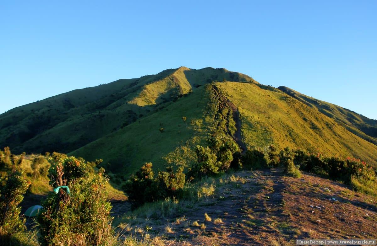 Почти все фотографии в рассказе - фотографии с Мербабу. А сам вулкан фотографировать почти всегда было неудобно. Но этот кадр с его вершиной всё-таки получился. Слева виднеется наша палатка и ленточки, повязанные кем-то на кустах на счастье.