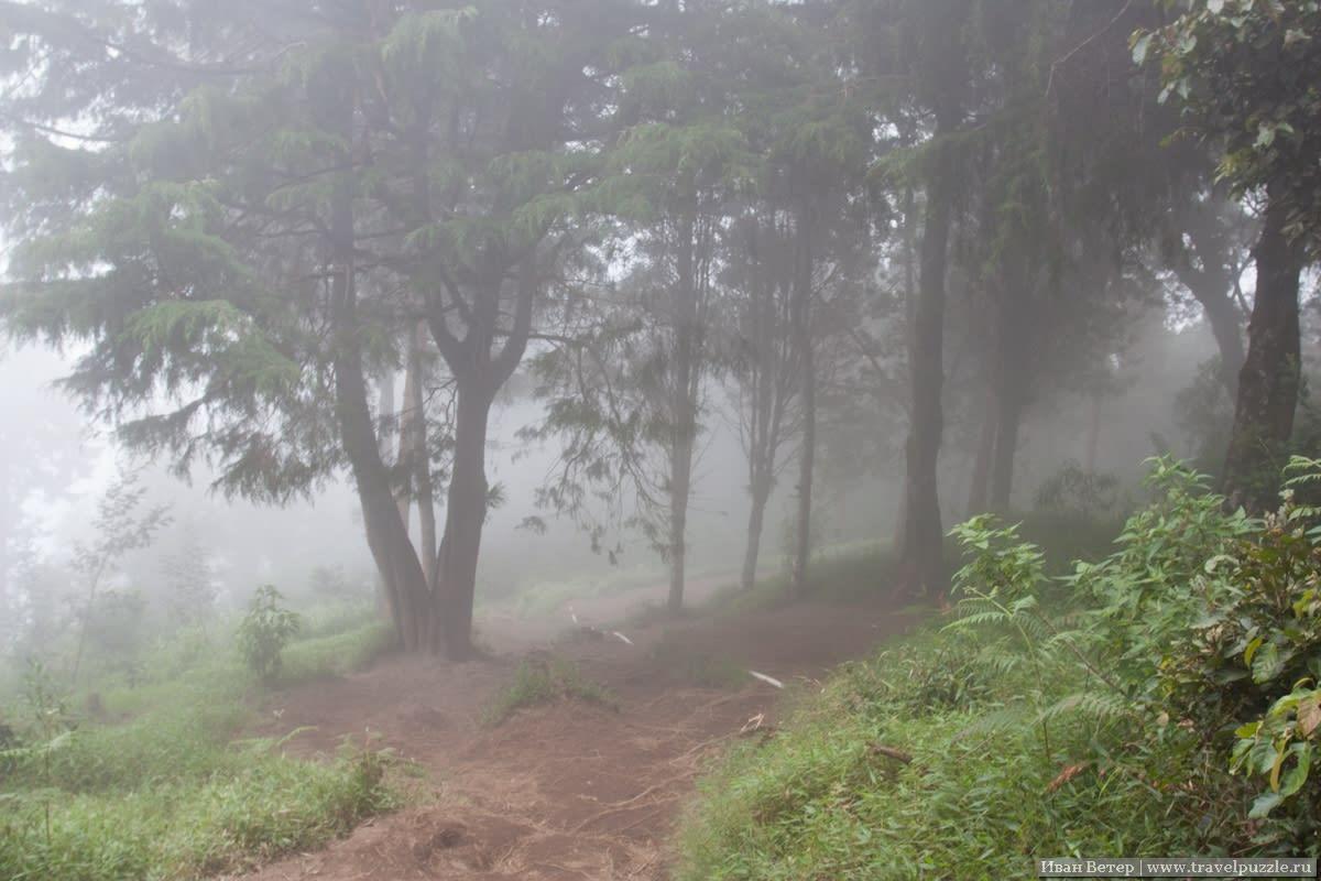 Немного Silent Hill'а внутри облака