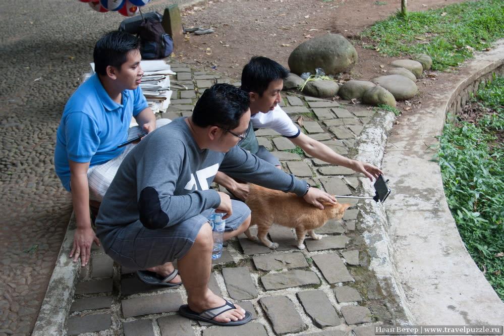 Селфи индонезийцев