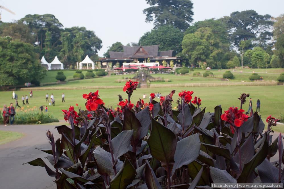 Богор и его ботанический сад. Остров Ява, Индонезия.