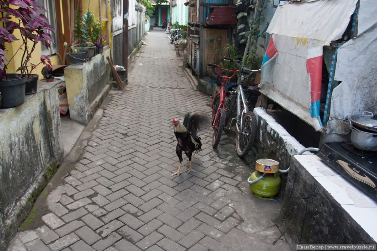 Переулок Джокьякарты