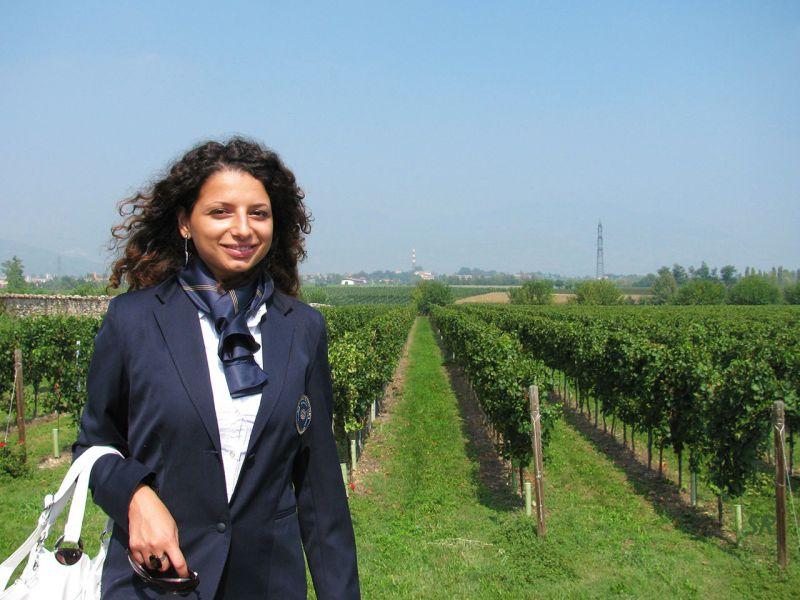 Gallery - September 2010 - Franciacorta vineyards