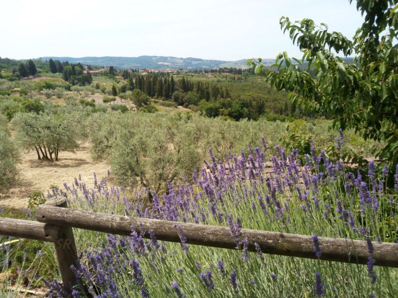 Gallery - May 2017 - Landscape in Chianti Tuscany