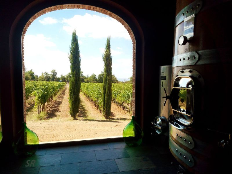 Gallery - August 2017 - Brunello winery in Tuscany