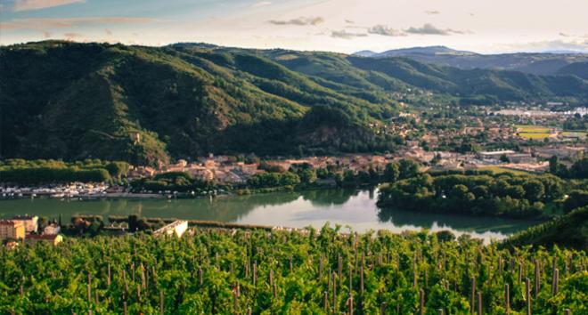 les meilleurs vignerons du Rhône