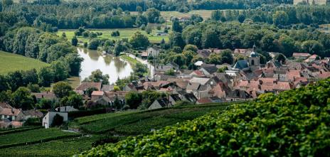 Champagne Geoffroy7