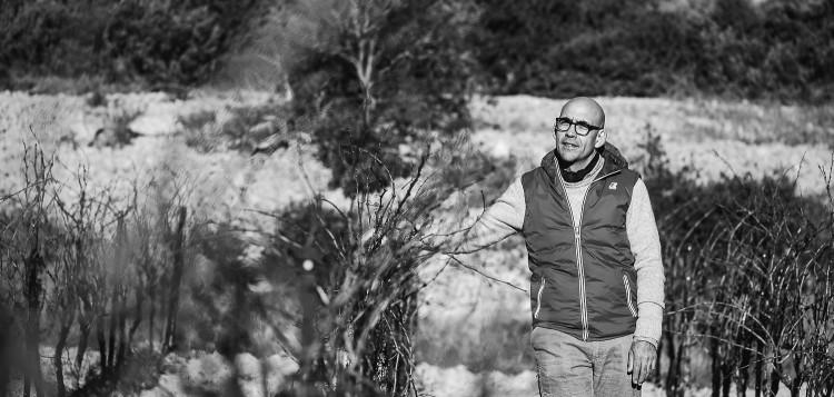 Olivier Mavit - Artisan Vigneron
