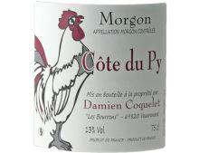 DOMAINE DAMIEN COQUELET COTE DE PY MORGON ROUGE 2019