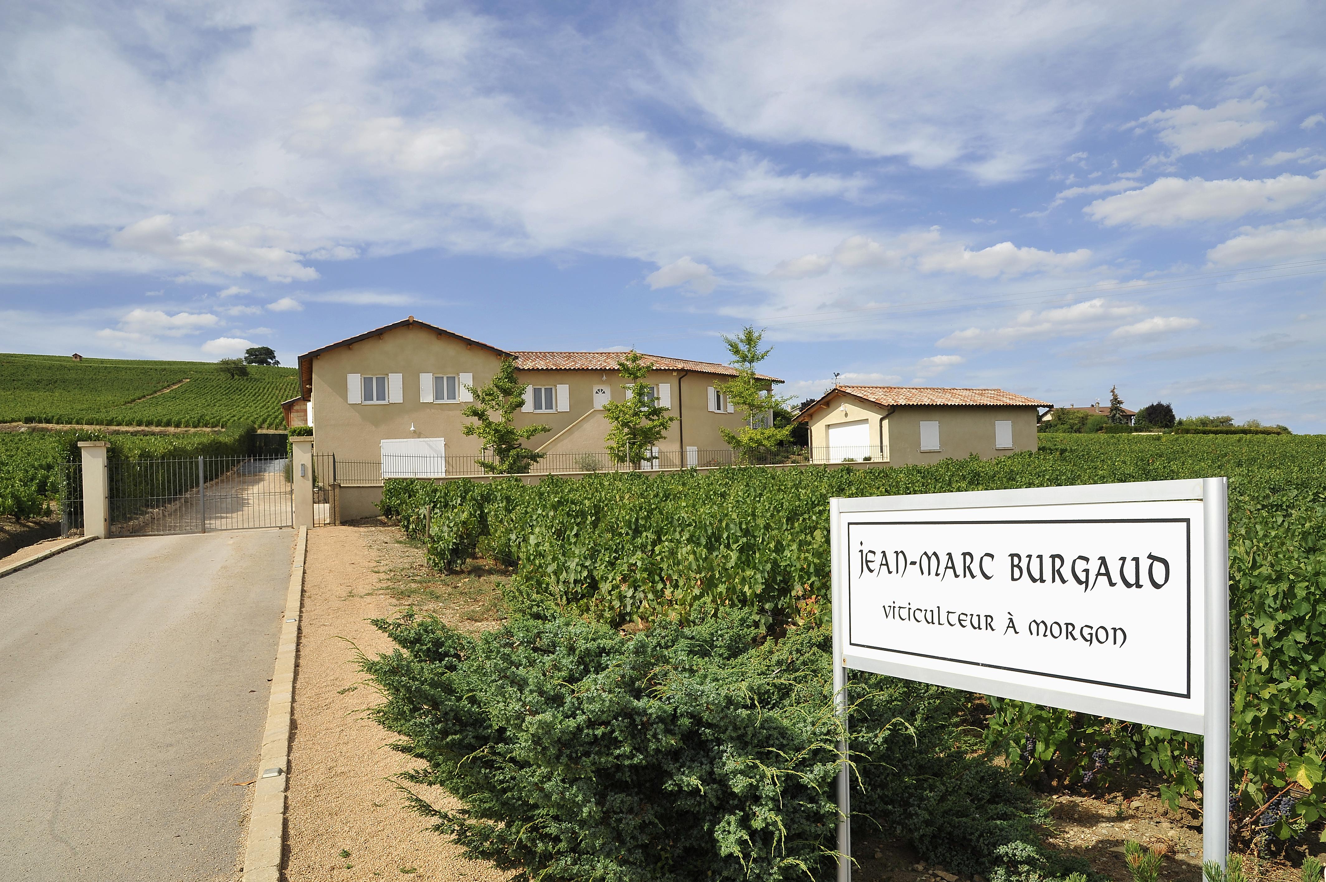 Jean Marc Burgaud Morgon Les Charmes 2017 Wine Com