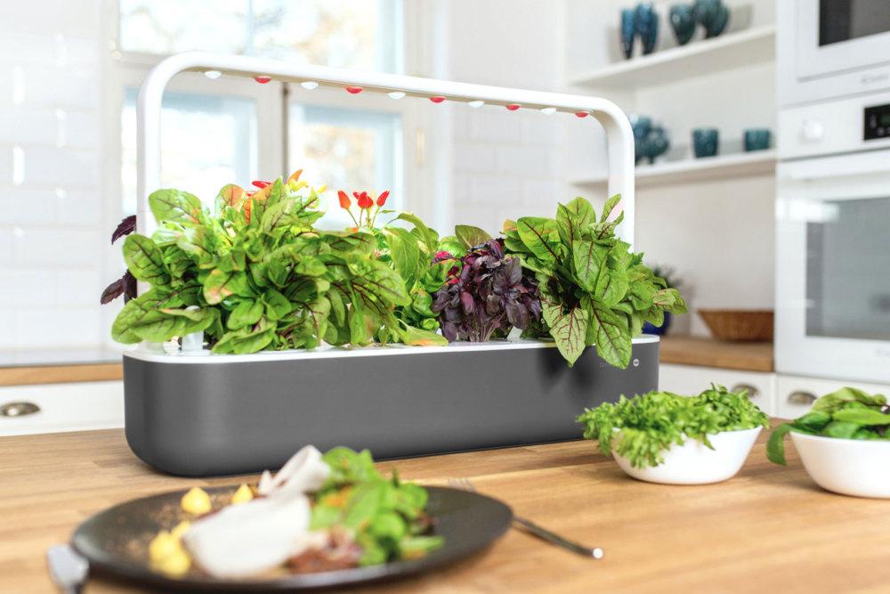Emsa Smart Garden ist ein smartes Weihnachtsgeschenk 2020
