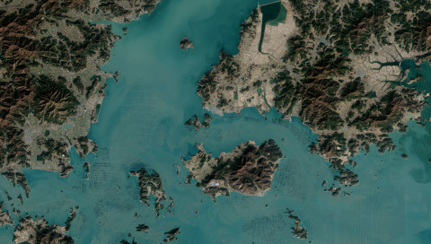 NASA-Fotos geben Rätsel auf: Riesige Seetang-Felder ähneln einem Schachbrett