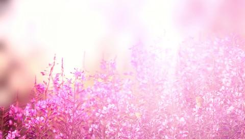 Künstliche Blumen lernen, sich von allein zu bewegen