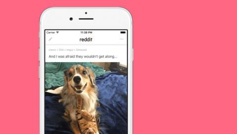 Reddit veröffentlicht eigene Apps für Android und iOS