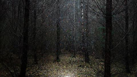 Die Fotografin Ellie Davis macht aus Weltraumfotos mystische Waldlandschaften