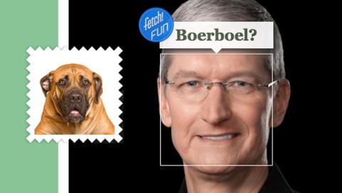 5 Tech-Bosse und welchen Hunden sie ähnlich sehen