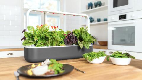 Smart Garden: So cool und praktisch kann Gärtnern sein