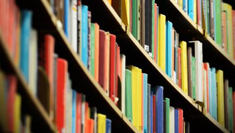 WIRED empfiehlt: Bücher, die schlauer machen