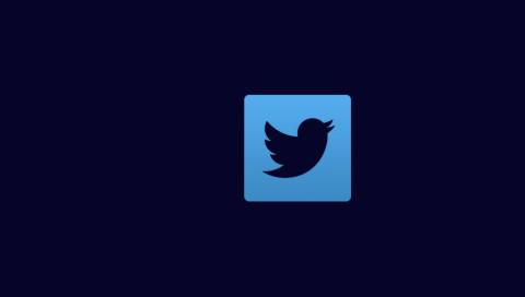 Shitstorm: Twitter verifiziert rechtsradikalen Account