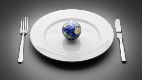 Forscher: Veganismus wird das Hungerproblem nicht lösen