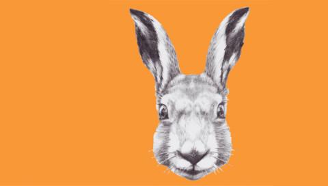 WIRED testet: Die Berlin-App White Rabbit lässt euch bestimmt nicht in Touri-Fallen tappen