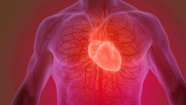 Eine mitwachsende Herzklappe macht weitere Operationen unnötig