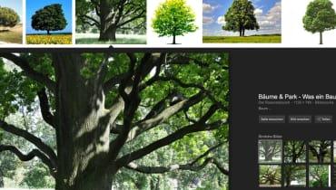 Bilderklau oder besseres Produkt? Streit um die neue Google-Fotosuche (UPDATE)