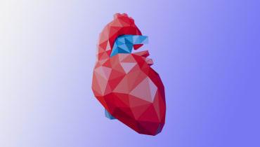 Recycling-Organe könnten Millionen Leben retten