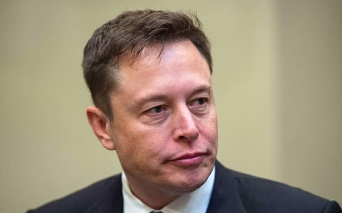 Elon Musk Jung