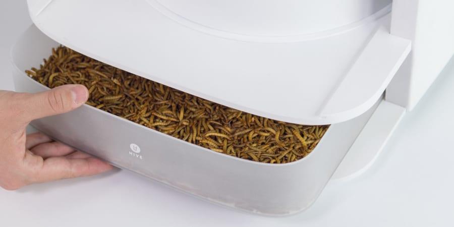 LIVIN Farms Hive ist die stylische Mehlwurmfarm für zu Hause | WIRED ...