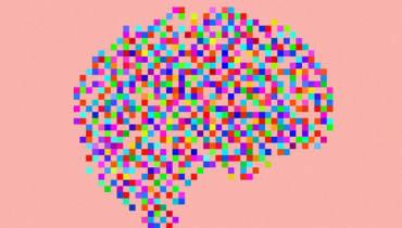 Das Gehirn enthält keine Erinnerungen – Es IST Erinnerung